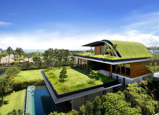 How to Make Your Home Eco-Friendly